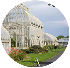 Visit National Botanic Gardens with Dublin Car Rental Special Offers